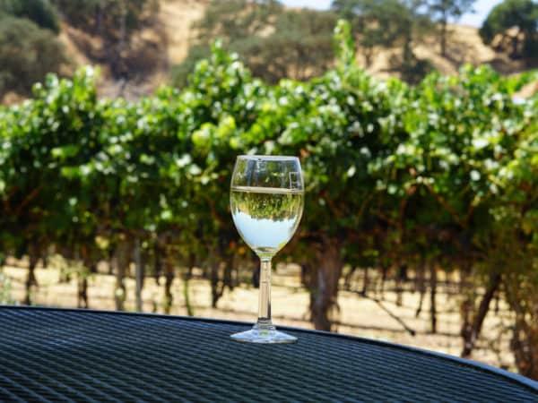 winery-vp